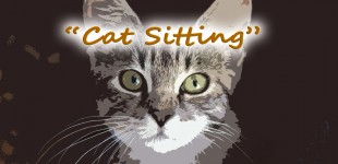 Cat Sitting - CROWDFUND Campaign