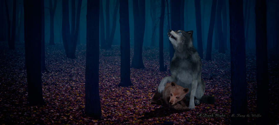 Wolfie-&-BFang-03_Dark Night_950x425
