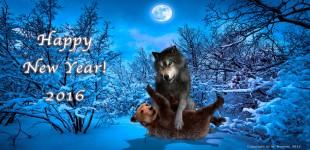 Happy New Year! 2016