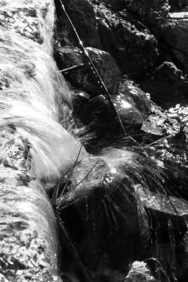 Cerderberg_Water_683x1024.png