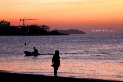 View the album Ibiza (2012)