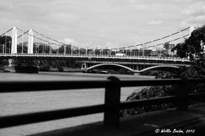View the album Battersea Park (2013) B&W