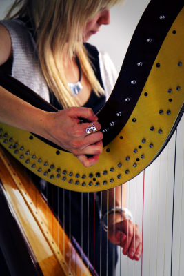 Harp_Player_2011_683x1024.png